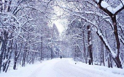 Winterreise, raakt hart en ziel